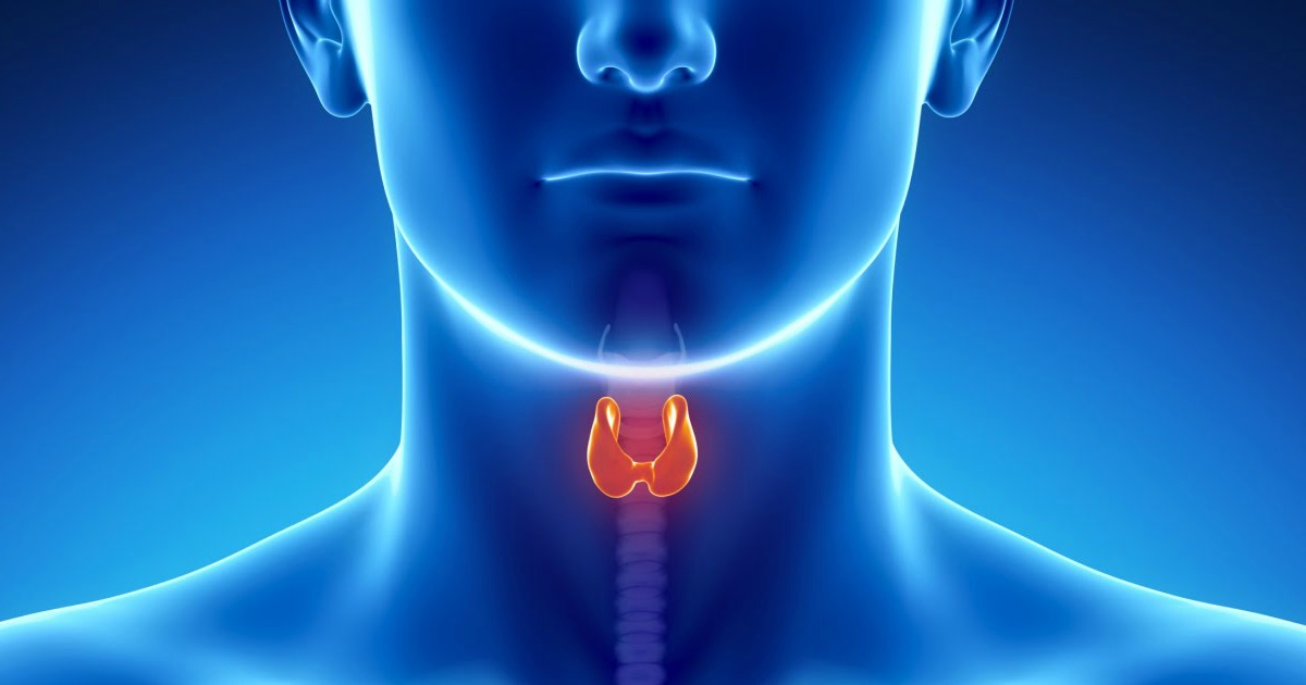 Hypothyroidism-Low-Thyroid-Hormone-Tips